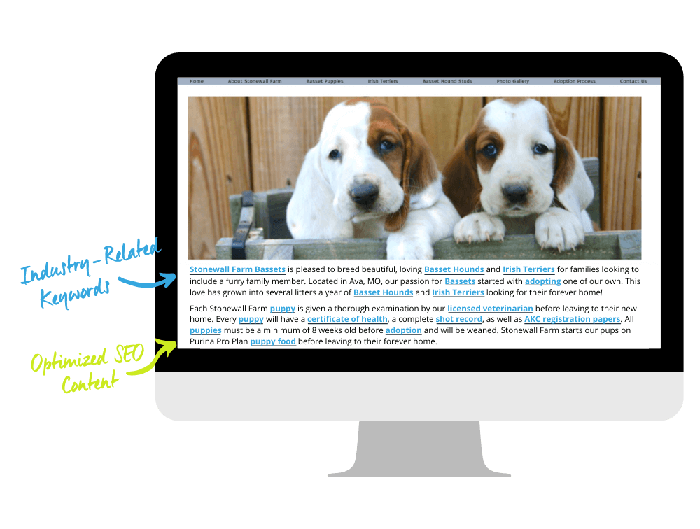 basset houng breeder website displayed on mac monitor